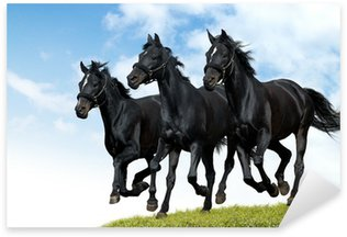 Sticker - Pixerstick black horses dallop