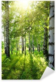 Sticker Pixerstick Bois de bouleaux en été avec le soleil