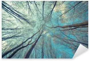 Pixerstick Sticker Bomen Achtergrond van het Web