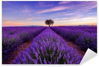 Pixerstick Sticker Boom op lavendelgebied bij zonsopgang in de Provence, Frankrijk