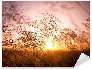 Sticker Pixerstick Brins d'herbe séchés par le soleil
