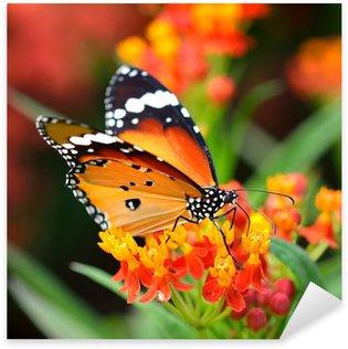 Pixerstick Sticker Butterfly on oranje bloem in de tuin