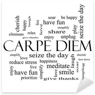 Pixerstick for All Surfaces Carpe Diem Word Cloud Concept in black and white