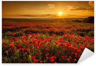 Sticker Pixerstick Champ de coquelicots au coucher du soleil