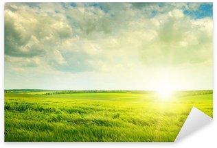 Sticker Pixerstick Champ vert et le lever du soleil