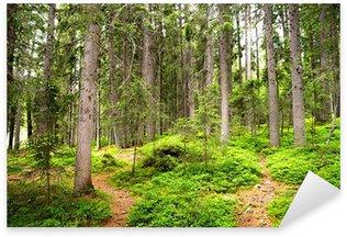 Sticker Pixerstick Chemin dans les bois