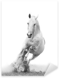 Sticker Pixerstick Cheval blanc