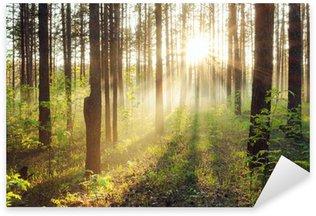 Sticker Pixerstick Coucher de soleil dans les bois