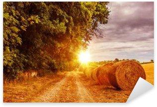 Countryside Summer Road Pixerstick Sticker