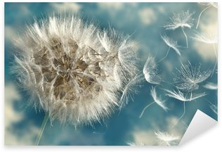Dandelion Loosing Seeds in the Wind Sticker - Pixerstick