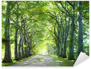 Pixerstick Sticker De weg in het bos