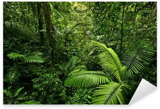 Sticker Pixerstick Dense Tropical Rain Forest