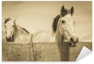 Sticker Pixerstick Deux chevaux blancs