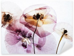 Sticker - Pixerstick dry poppies