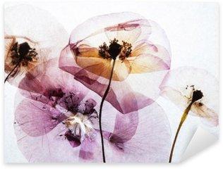 dry poppies Sticker - Pixerstick
