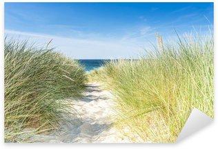 Sticker Pixerstick Dune avec plage herbe close-up.
