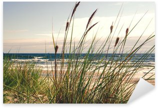 Sticker Pixerstick Dune herbe dans la lumière du matin :)