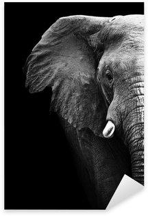 Sticker Pixerstick Elephant close up