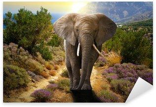 Sticker Pixerstick Éléphant marchant sur la route au coucher du soleil