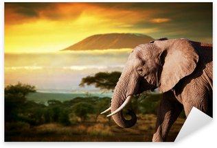 Sticker - Pixerstick Elephant on savanna. Mount Kilimanjaro at sunset. Safari