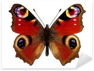 Pixerstick Sticker Europese Peacock vlinder (Inachis io)