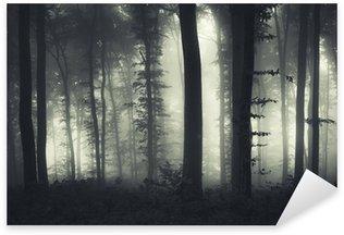 evening light in a dark misty forest Sticker - Pixerstick