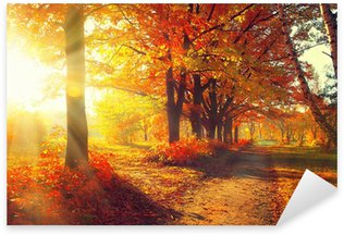 Sticker - Pixerstick Fall. Autumn Park. Autumnal Trees and Leaves in sun rays