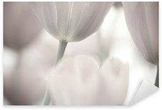 Pixerstick Sticker Fijne kunst van het close-up Tulpen, vaag en scherpe
