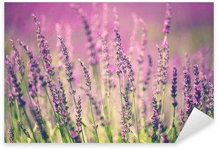Sticker Pixerstick Fleur de lavande