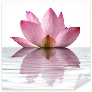 Floating Lotus Sticker - Pixerstick