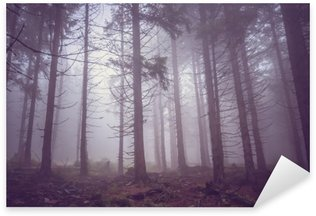 Sticker - Pixerstick Fog in the haunted forest in summer