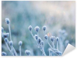 Sticker Pixerstick Fond naturel abstrait de la plante gelée recouverte de givre ou de givre