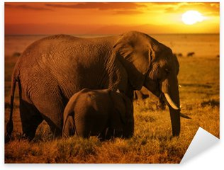 Sticker - Pixerstick Forest elephant with her calf at sunset