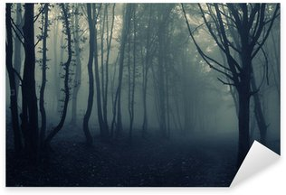 Pixerstick for All Surfaces forest landscape with fog