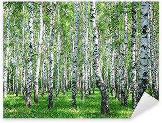 Sticker Pixerstick Forêt de bouleaux au printemps avec des verts frais