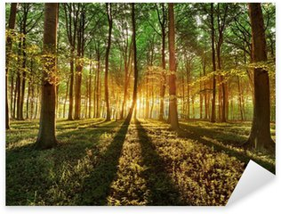 Sticker Pixerstick Forêt de printemps