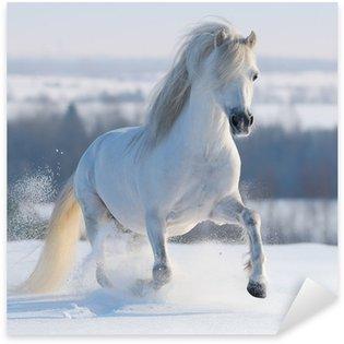 Sticker - Pixerstick Galloping white horse
