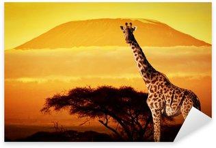 Sticker - Pixerstick Giraffe on savanna. Mount Kilimanjaro at sunset. Safari