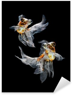 Sticker - Pixerstick goldfish isolated on black background