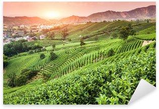 Sticker - Pixerstick Green tea garden on the hill,china