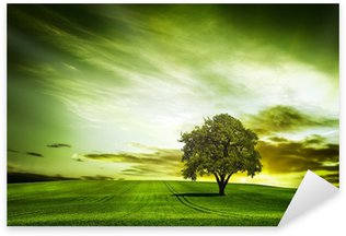 Pixerstick Sticker Groene natuur