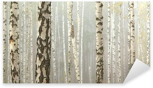 Sticker - Pixerstick Grove of birch trees and dry grass in early autumn, fall panorama