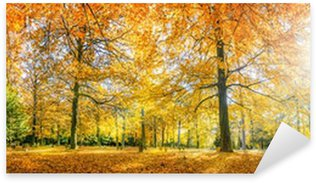 Sticker - Pixerstick Herbstwald Panorama