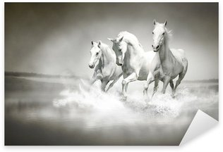 Sticker - Pixerstick Herd of white horses running through water
