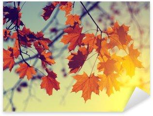 Pixerstick Sticker Herfstbladeren op de hemel