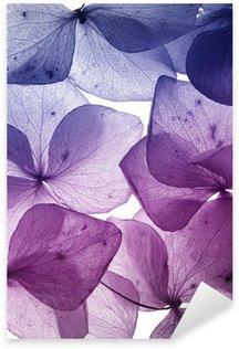 Pixerstick Sticker Kleurrijke bloem bloemblaadje close-up