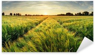 Pixerstick Sticker Landelijk landschap met tarwe veld op zonsondergang