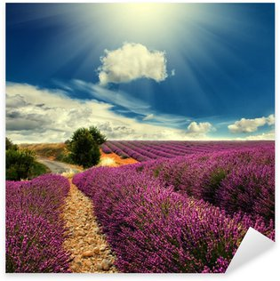 Sticker Pixerstick Lavender field