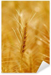 Sticker Pixerstick Le grain de blé