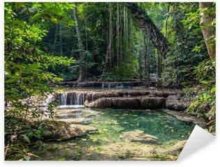 Sticker Pixerstick Lianes dans la forêt tropicale. Erawan National Park en Thaïlande